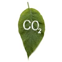 Ympäristöystävällinen tilausajo